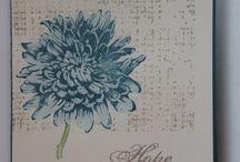 Card / Box - Aus dem Garten der Freundschaft / Blooming With Kindness -