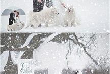 plenery zimowe ślubne