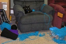 <3 Black Cats / by Lyra Parish