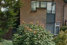 Ckv 4Hf Stijn Driessen