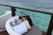 EDME - Bali's Exotic Skin Goods