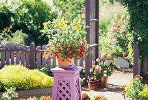 Garden ideas / by Sandie White
