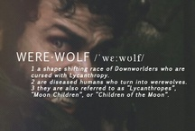 WEREWOLVES; summon the wolf inside you and welcome the darkness like it is home / (in folklore) a person who changes for periods of time into a wolf, typically when there is a full moon.