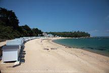 Noirmoutier / L'ile de Noirmoutier par le Pont ou le Passage du Gois, visitez son Vieux Château ou les marais salants, faites un petit plouf sur une des belles plages de sable fin.