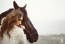 moments with horses