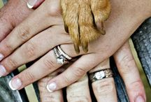 Pre-Wedding Photography / Ideas for prewedding with dogs