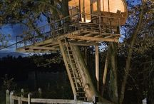 tree house love / by Mimi Strandberg