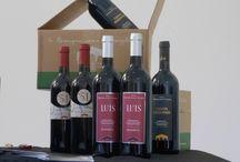 """LONDRA 2014 Gusto from Romagna """"Italian fine food & wine show' / Gusto from Romagna – Italian fine food & wine show' con il Consorzio Vino e Olio delle colline cesenate"""