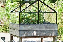 # Greenhouse
