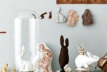 Bunnies-Rabbits