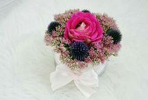 Virágdobozaim! My box of flowers! / Zömében kerti virágokból készített virágdobozaim!