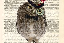 owls and book illustrations