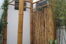Bambú / by Juan Hernandez