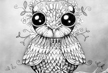 Colouring owls
