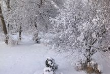 Snow / softly, quietly, the season of rest.