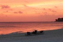 Sensational Sunsets / by Susan Della Rocca