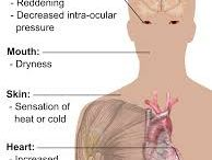 Marijuana / A few of the effects and issues caused by smoking marijuana.