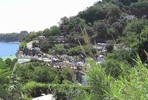 Spot Tv Parco Termale Castiglione   Marco Bizzarro / Sono molto orgoglioso di poter realizzare questo spot televisivo, che mostra le meraviglie della mia isola d'Ischia: il Parco Termale di Castiglione