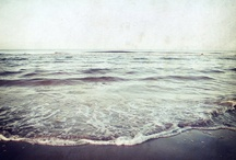 Sea Story / by DreamsFactory