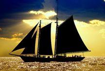 SPORT • Sailing