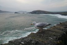 Wild Atlantic Way (before it was called that) / Some pictures taken along the western seaboard of Ireland in April 2013