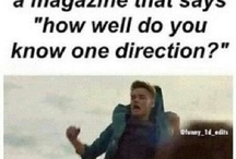 ONE DIRECTION INFECTION / Its all about one direction and a few crossovers...