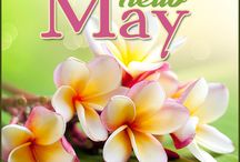 May / Month of May. Hello May.