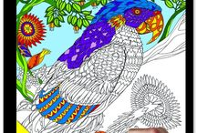 Coloring Jigsaw Puzzles / Do you like to color and assemble jigsaw puzzles?  Now you can do both.  Coloring Jigsaw Puzzles were just introduced by manufacturers in the middle of 2016