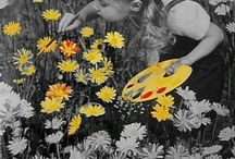 * Flowers & Garden *
