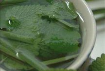 Recipes Thai