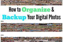 Archive Organization