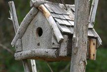 Jardin oiseau