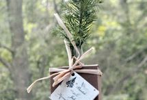 wedding trees / For memorable wedding favors, give tree seedlings , not only are they beautiful table decorations, naturally elegant, but they will grow memories of your wedding day that last forever.