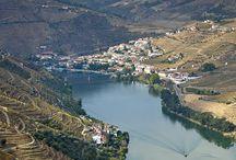 Douro Vinhas Régua St Marta Batoca