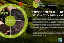 Organic Farming / OrganicFarming is a system that relies on ecosystem management rather than external agricultural inputs. It is a system that begins to consider potential environmental and social impacts by eliminating the use of synthetic inputs, such as synthetic #fertilizers and #pesticides, veterinary drugs, genetically modified seeds and breeds, preservatives, additives and irradiation.