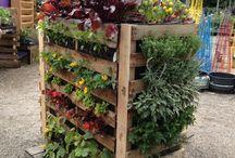 Dicas BN Jardinagens e Reciclagens / Reaproveite, crie, inspire-se com a simplicidade.