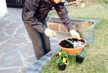HCDC Garden / Le aiuole dell'hotel curate da Anna, la proprietaria dell'albergo.