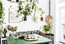 Grønne planter / Inspiration til flere skønne planter i hjemmet