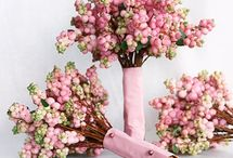 Beautiful Bouquets / by Lolly