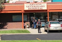 Our Hospital / We are located at 6645 Wadsworth Blvd. Come check us out!