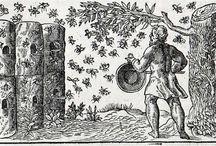 Bees in history / Bienen in der Geschichte