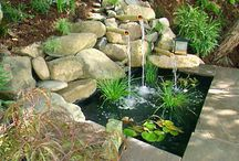 Ponds/Water Features / by Cheryl Heslop