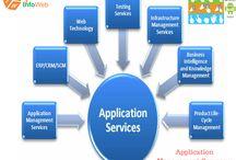 Application Management Company