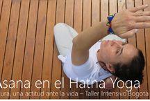 Yoga en Bogotá