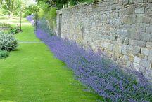 Garden - Landscape Garden designs