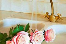 Flores / Flores que me gustan