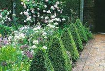 Crooke garden ideas