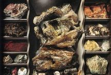 Crystals and minerals & Fossils / by Beth Foster
