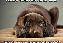 Humor / Aqui você encontra os melhores pins de Humor do Pinterest. Sorria faz bem para a saúde!