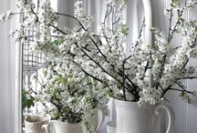 Hues: white / Whites creams and in between; décor accents and anything with a natural pale hue